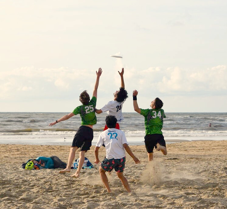 disc devils twente ddt ultimate fisbee beach